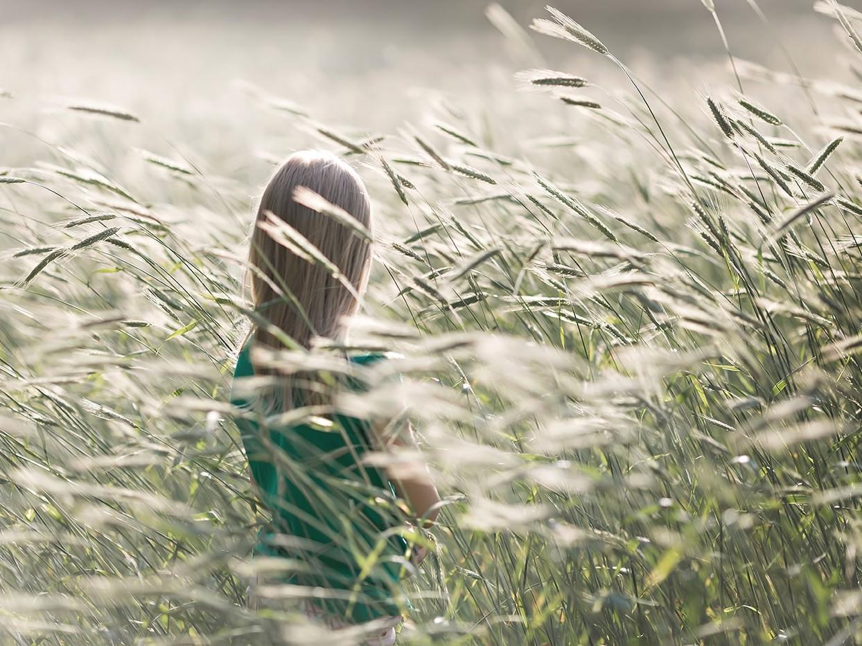Child sitting in wheat field